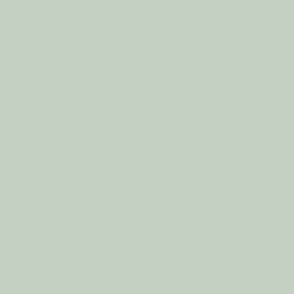 Ironworks Radiators Inc. little Greene, Salix paint finish